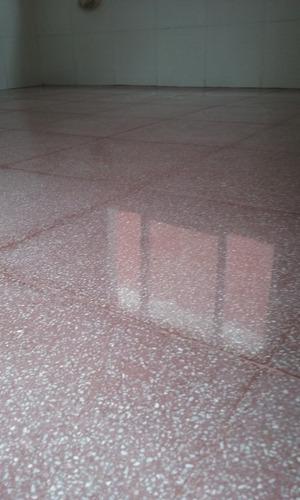 pulido y plastificado de pisos