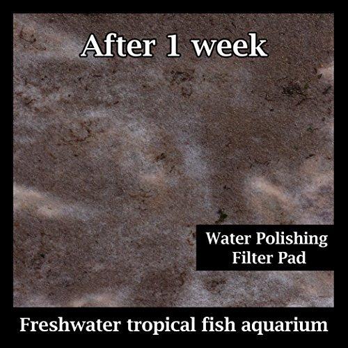 pulir filtro de 100 micras - acuario prefiltro media - 24