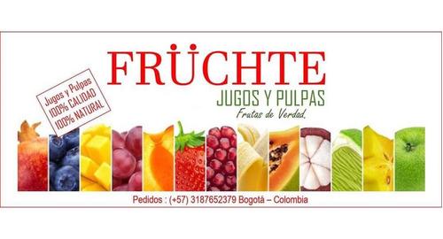 pulpas de frutas artesanales