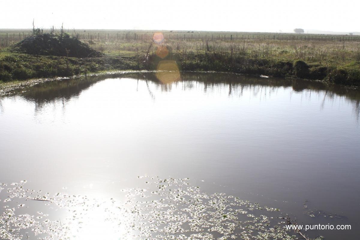 punto río | 5 has. en ruta 15 con financiación propia