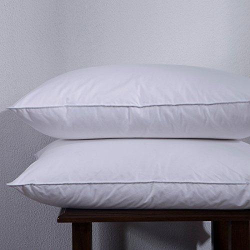 Puredown de ganso blanco abajo y almohada de plumas cama - Almohada pluma de ganso ...