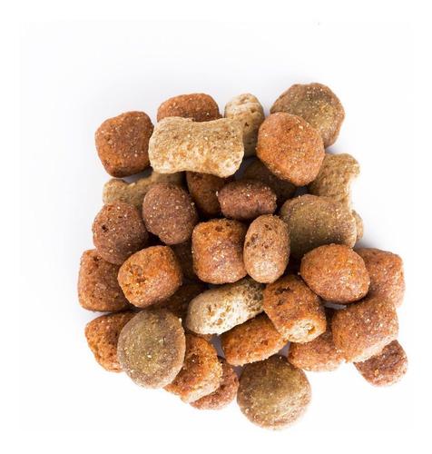 purina® dog chow® adultos medianos y grandes 15kg + regalos