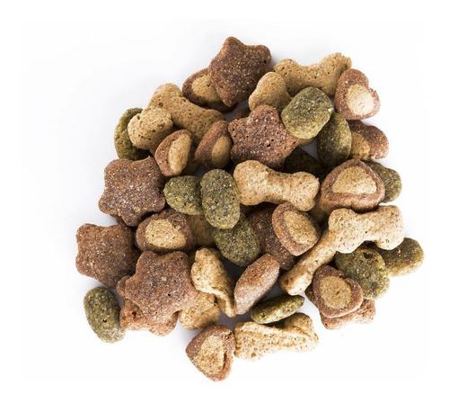 purina® dog chow®cachorros medianos y grandes 21kg + regalos
