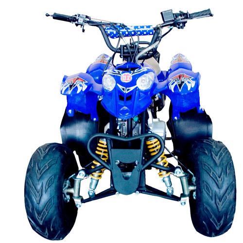 quadriciclo juvenil 110cc automático barzi motors moskiti