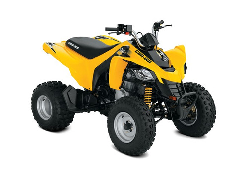 quadriciclo youth ds 250 can am
