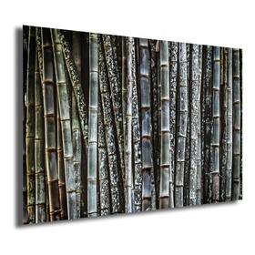 Quadro Bambu / Fotografia - Fine Art, Metacrilato