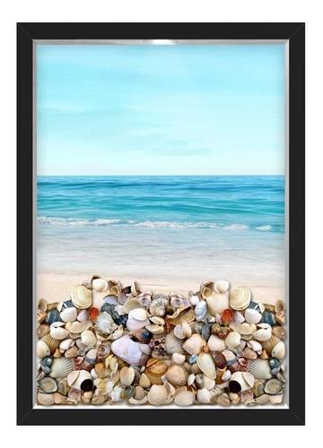 quadro caixa porta conchas praia mar
