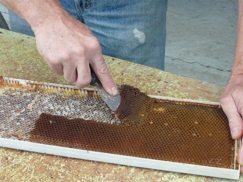 quadro de ninho para apicultura pronto para uso 10 peças
