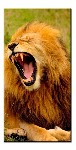 quadro decorativo animais fantásticos mdf 6mm promoção