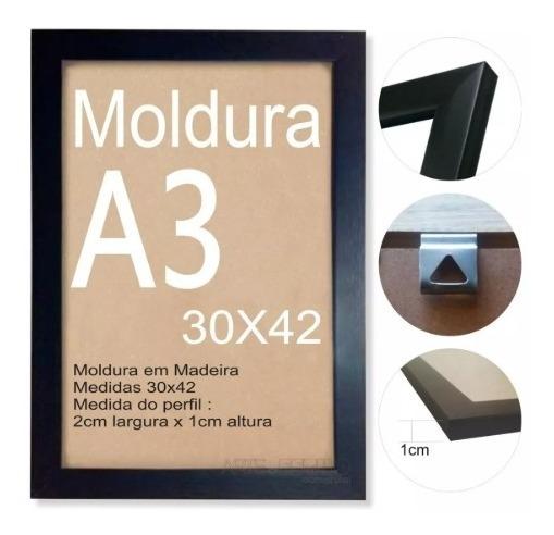 Quadro Decorativo Motivacional O Que é Sucesso 30x42cm