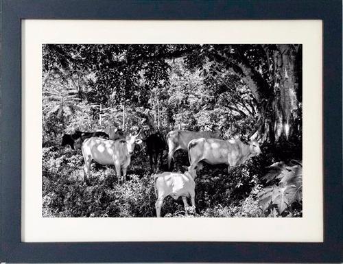 quadro fotografia fine art preto e branco, moldura qualidade