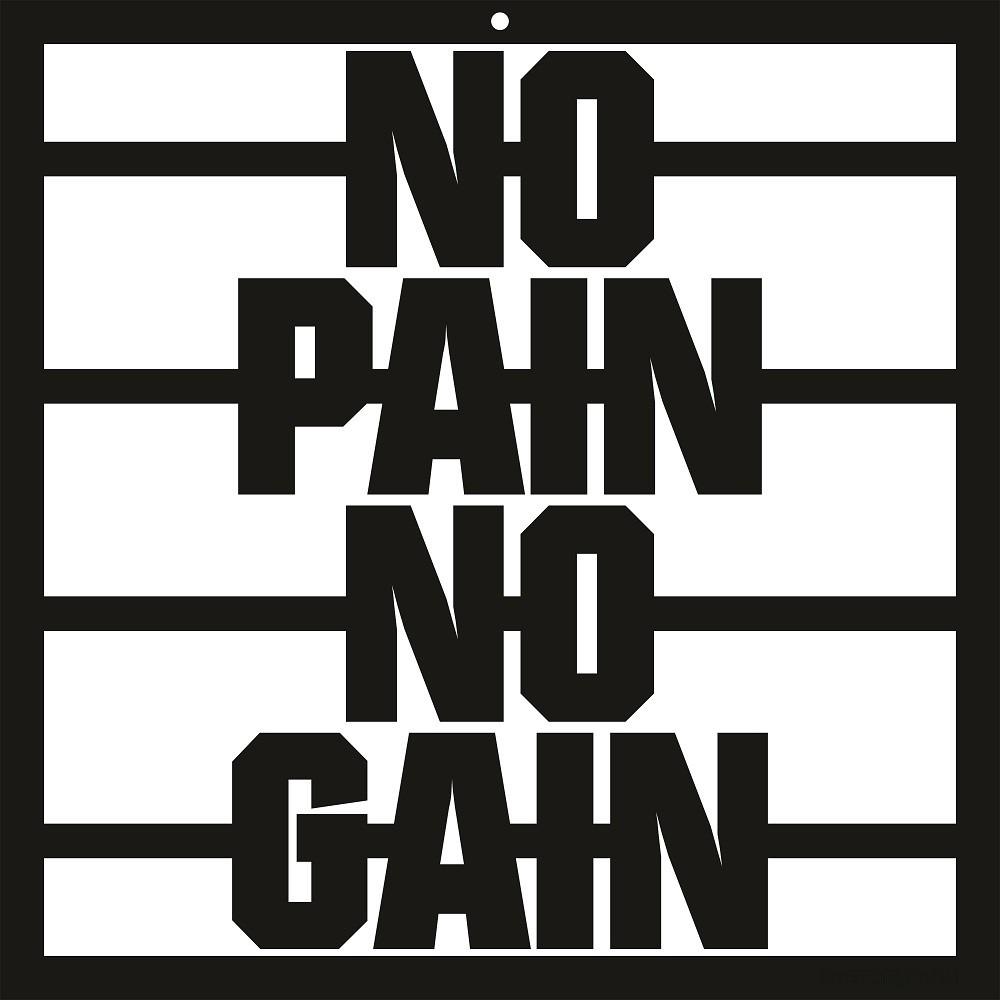 Quadro No Pain No Gain Motivacional Academia Treino Acrílico