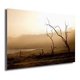 Quadro O Sol Alimenta / Fotografia - Fine Art, Metacrilato