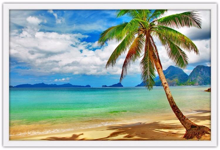 Quadro Paisagem 94x64 Moldura - Praia Tropical Coqueiro ...