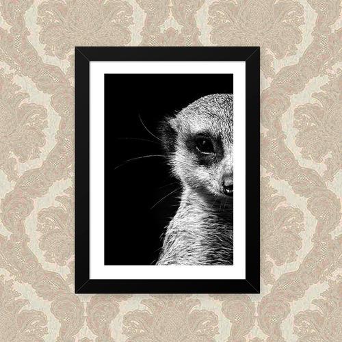 quadro suricate 33x43cm