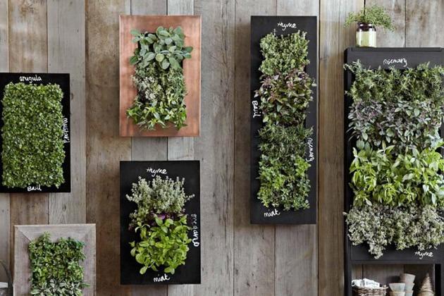 jardim vertical quadro vivo : Quadro Vivo Flores Horta Jardim Vertical Pain?l Cachepot ...