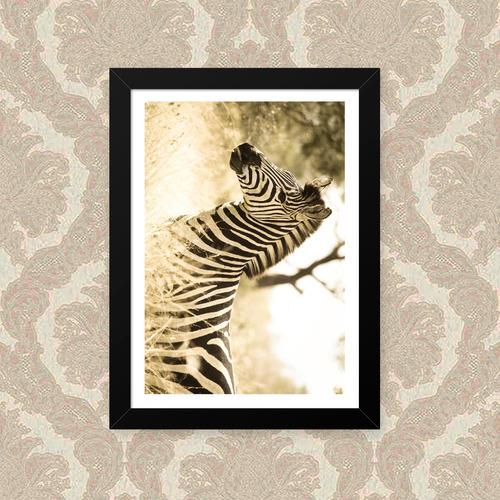 quadro zebra sépia 23x33cm