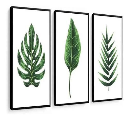 quadros decorativo folhas verdes fundo branco com moldura