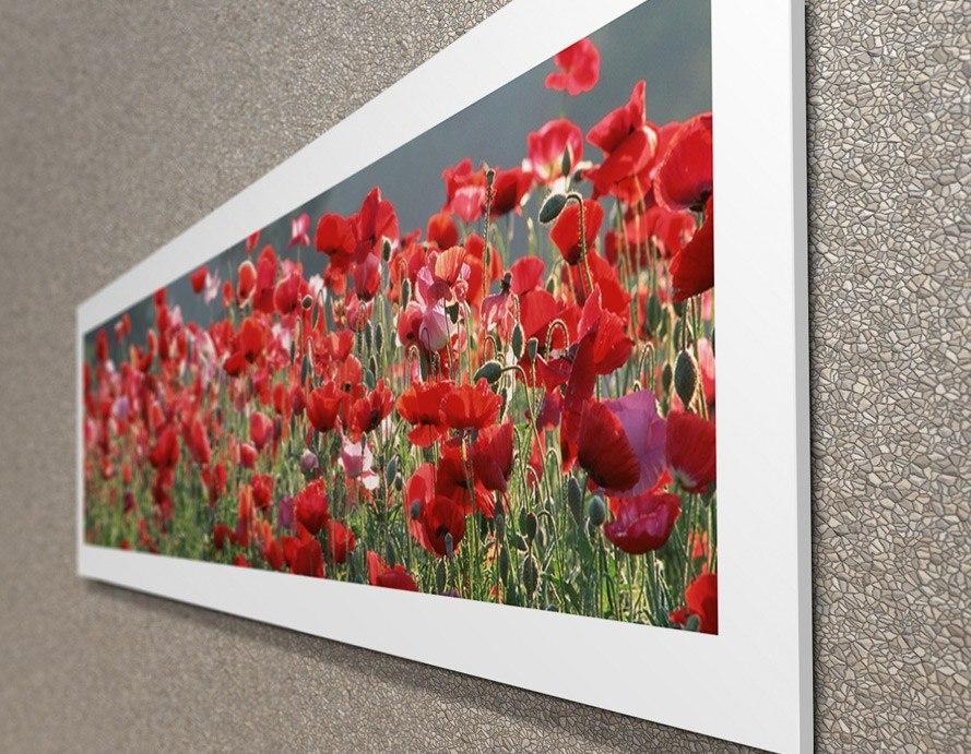 f33a5f112 Carregando zoom... decorativos flores quadros. Carregando zoom... quadros  decorativos flores campo presente sala quarto olilo