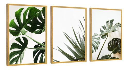 quadros decorativos folhagem costela de adão moldura madeira