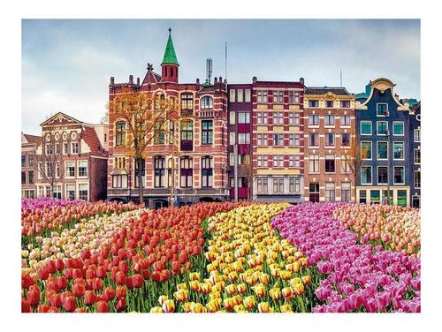 quebra cabeça flores em amsterdã 500 peças grow