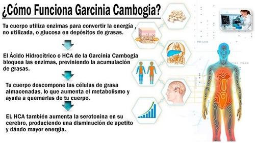 quema grasa garcinia cambogia 100% hca 3000mg reduce peso