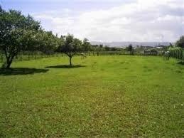 quer investir no futuro da sua família.. ótimos terrenos!!