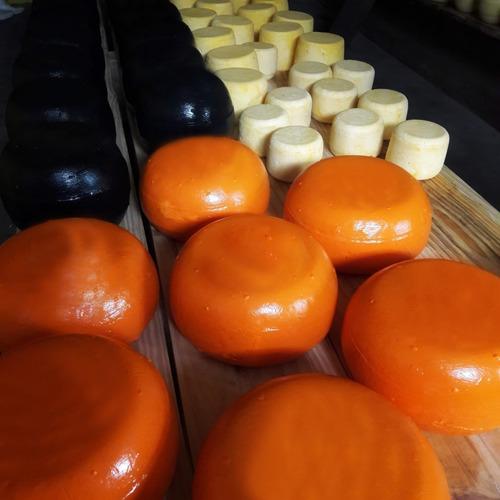 queso caserito sardo de campo