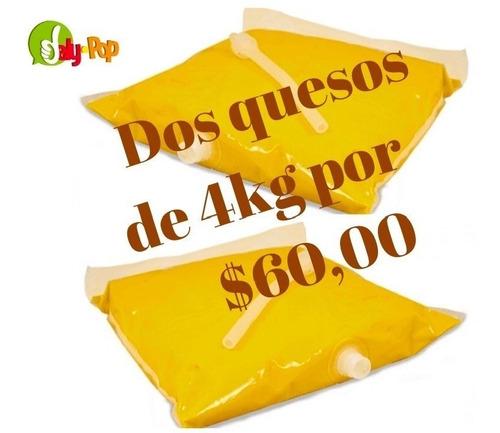 queso cheddar 4kg de los cines para nachos incluye envío!!