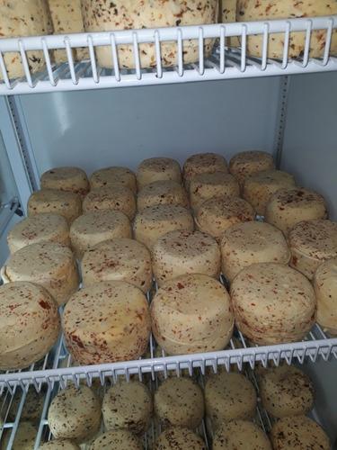 quesos saborizados de campo