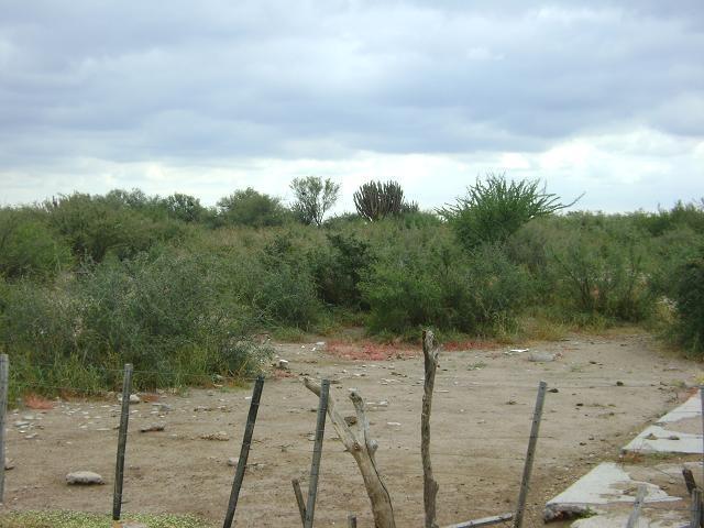 quilino,campo ganadero, 2700 has