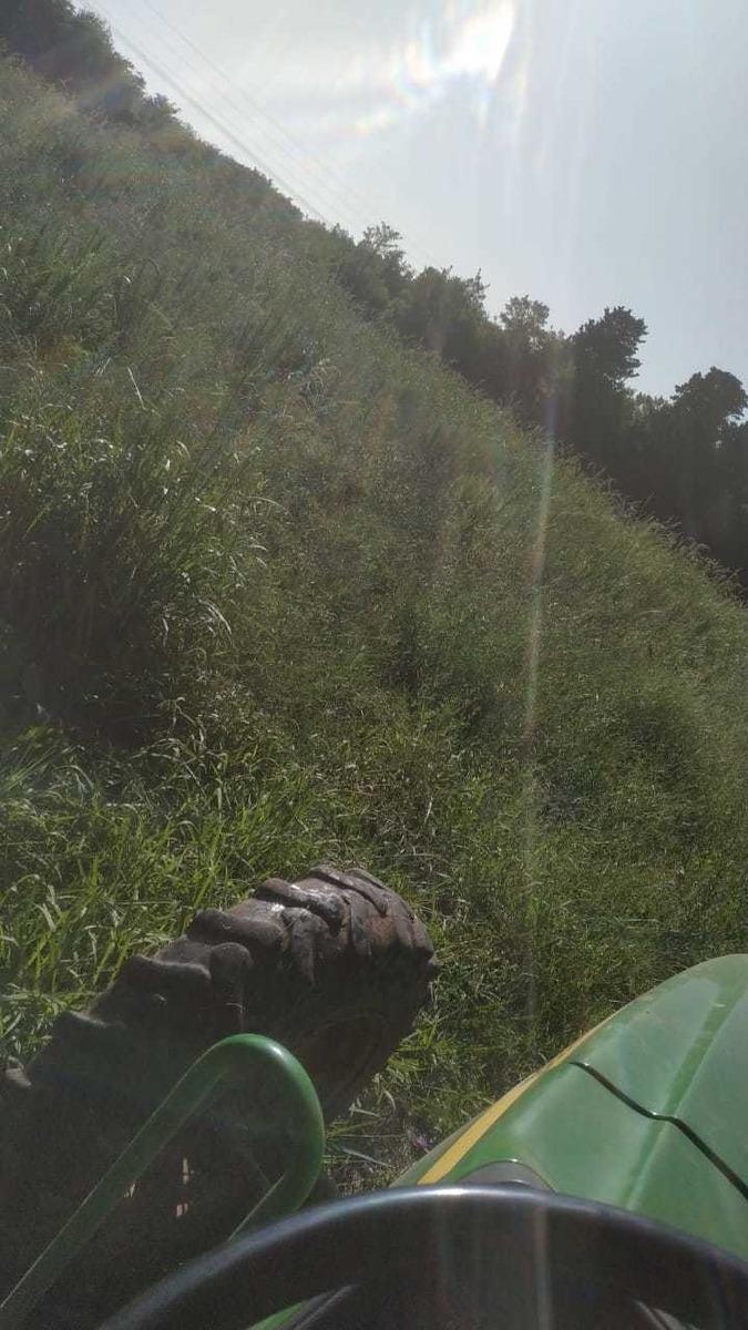 quinta 3 hectáreas