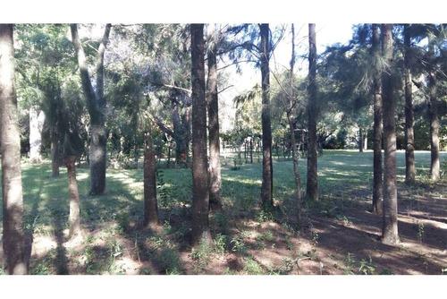 quinta / campo 3 hectareas baradero