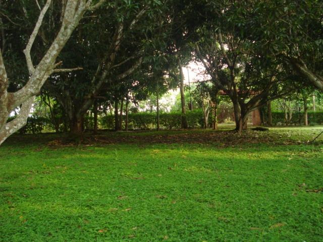 quinta en alajuela-orotina-ceiba-guacimo