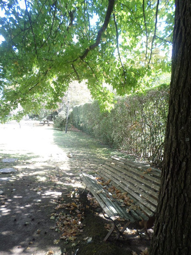 quinta ezeiza barrio el trebol acceso directo de ruta 205