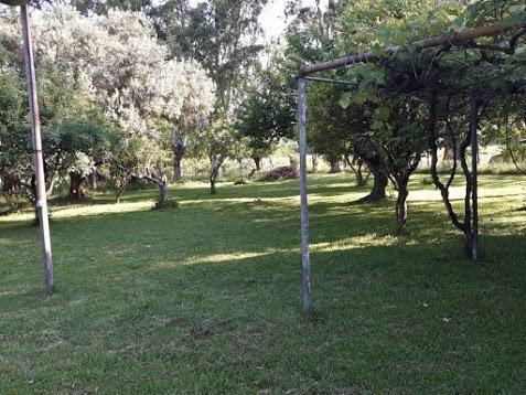 quinta - loma verde