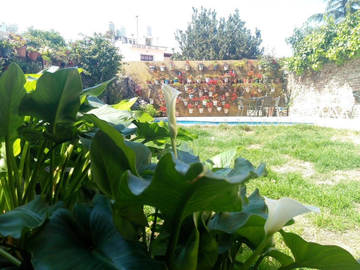 quintas de santa ana excelente propiedad. toda remodelada. ambientes grandes y luminosos