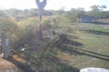 quintas en venta en montemorelos centro, montemorelos