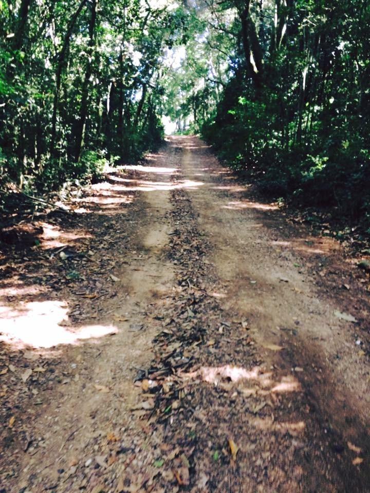 r oferta terreno de 40,000 com portaria água luz em ibiúna