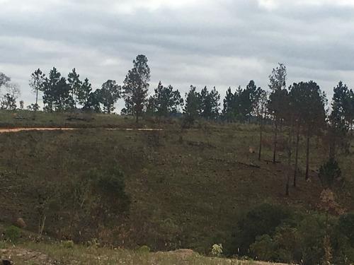 (ra) construa em seu novo terreno uma linda casa de campo!