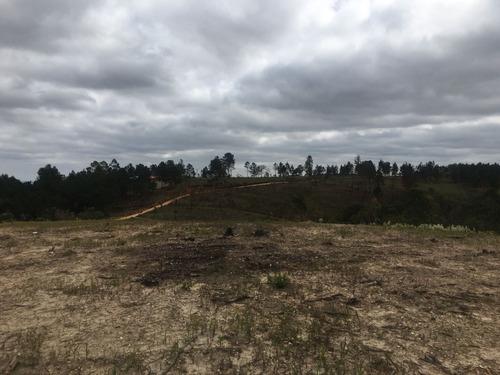 (ra) desfrute com sua família a posse de um novo terreno