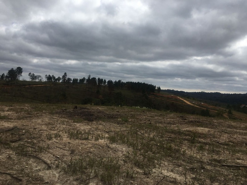 (ra) desfrute de um novo terreno em mairinque.