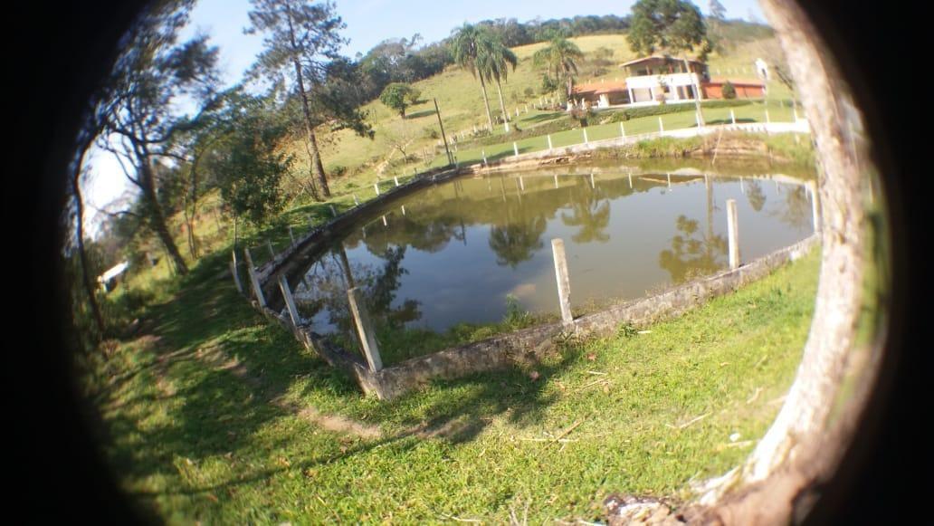 (ra) faça investimento garantido propriedade nazaré paulista