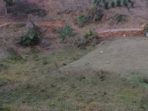 (ra) garanta agora terras lançamento igarata