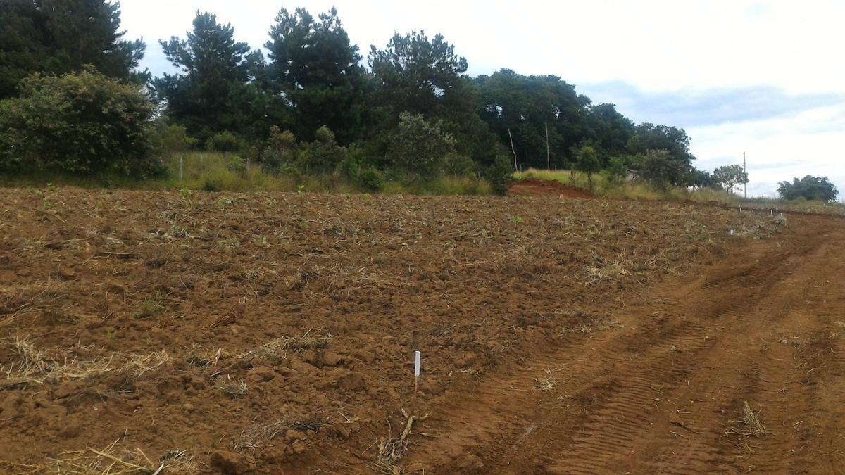 (ra) ibiúna vende-se terras