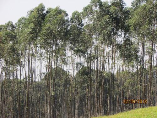 (ra) nazaré paulista com ótimas terras à venda