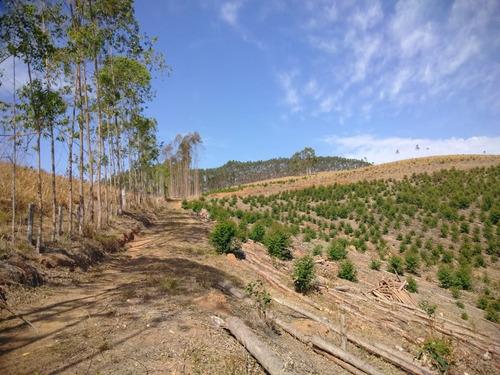 (ra) r$79mil por ótimas terras igarata