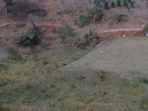(ra) venda de ótimas terras localidade igarata