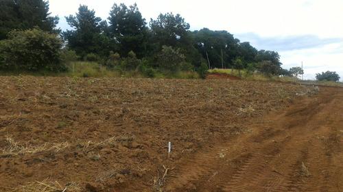 (ra) venda de terras em ibiúna por r$25000
