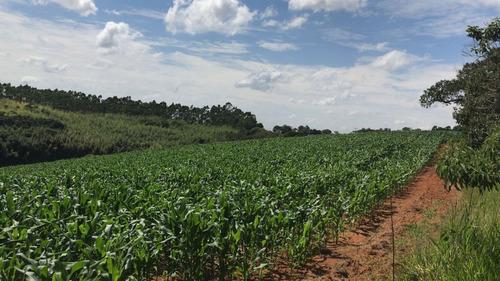 (ra) venha conferir essas ótimas terras em ibiuna